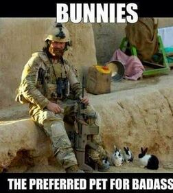Badass and Bunnies